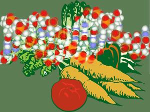 Alimentation pour améliorer la production d'hormones