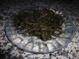 Deux algues comestibles très bonnes et très nutritives