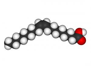 L'acide gras saturé n'est pas mauvais. Le gras trans l'est.