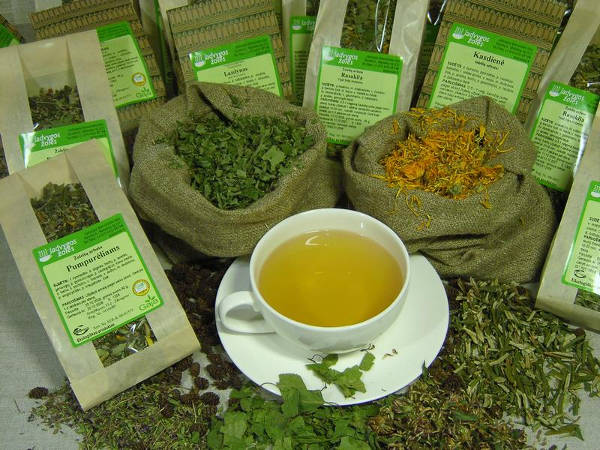 Les herbes digestives sont anti-cholestérol